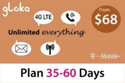 USA Travel SIM card T-mobile short term 35-60 days