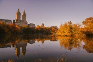 Công viên trung tâm - Image source: pexels